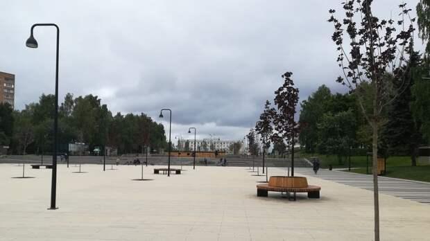 В Ижевске на Центральной площади по гарантии заменили 9 деревьев
