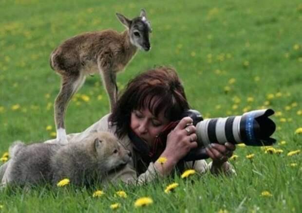 28 снимков, на которых мать-природа нас удивила