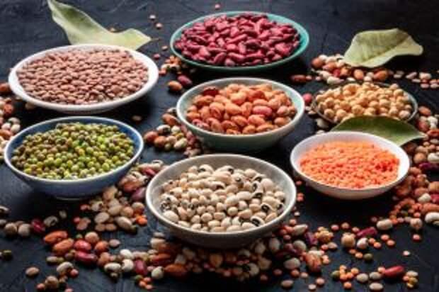 Лучшие источники растительного белка. Справочник по видам бобовых