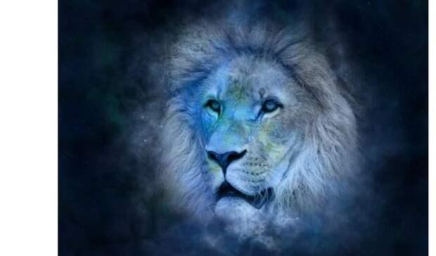 Гороскоп на15мая: Львам поможет самоуверенность, аСкорпионов ведёт судьба