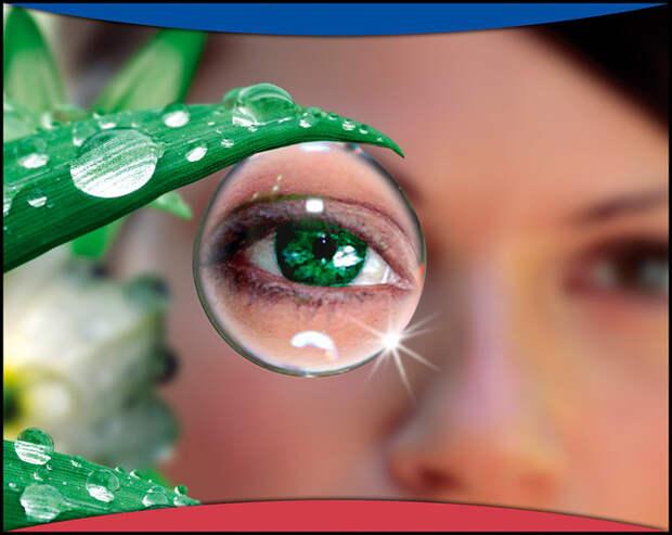 """Скачать Фитнес для глаз. Как сохранить хорошее зрение при работе с компьютером (2008) DVDRip бесплатно """" Журналы и Книги """" Noin."""