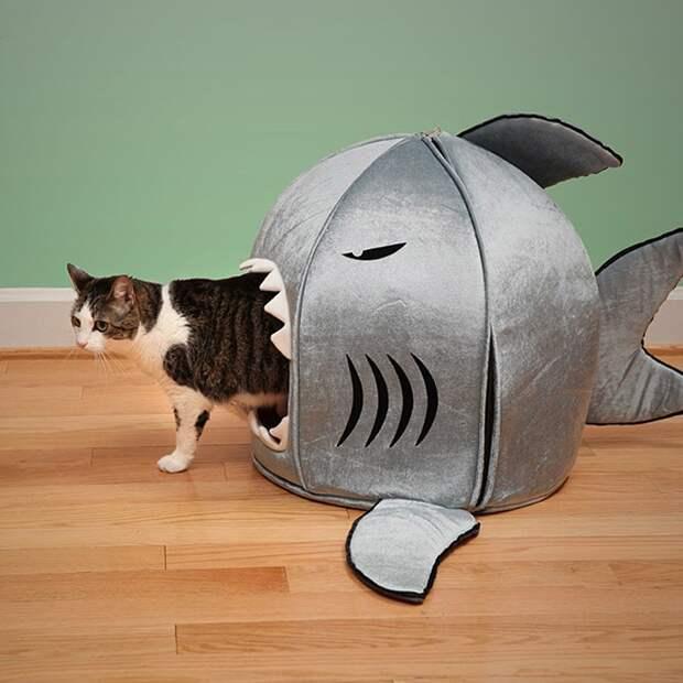 cathouse07 Дизайн для котов