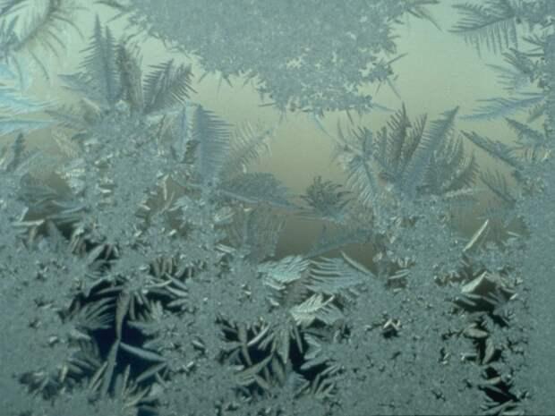 frozen13 Самые красивые фотографии морозной зимы