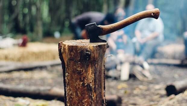 Аварийные деревья начали вырубать на улице Победы в Подольске