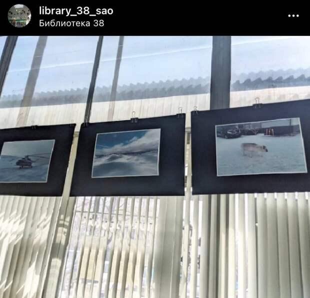 В библиотеке на Дмитровке открылась арктическая выставка