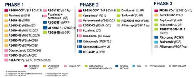 Программы исследований Regeneron на конец мая 2021 года