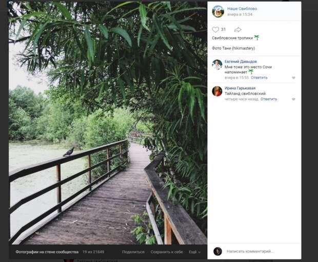 Фото дня: «тропический» пейзаж в Свиблове