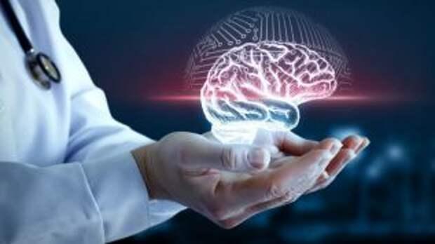 Шведские ученые рассказали, как можно замедлить процесс старения мозга