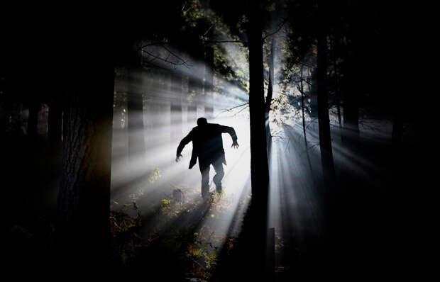 Древняя легенда становится реальностью. Невероятный шанс для вампира. Глава 11
