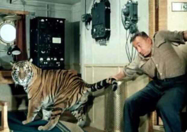 Кадр из фильма *Полосатый рейс*, 1961 | Фото: kinocomedy.livejournal.com
