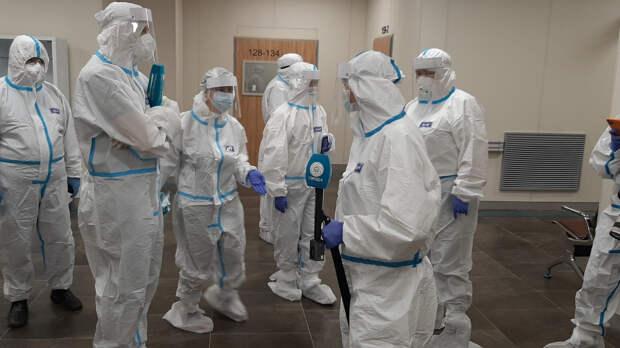 Сибирский и северо-западный штаммы коронавируса формируются в РФ