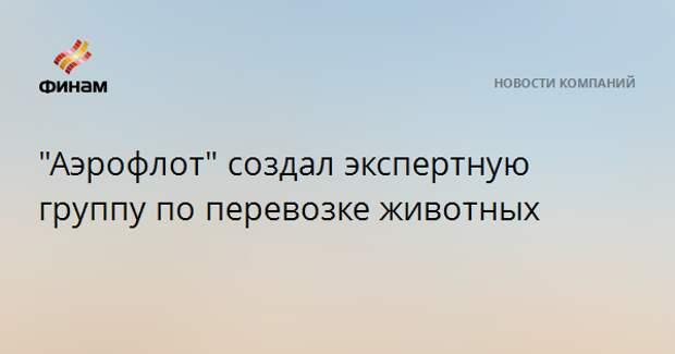 """""""Аэрофлот"""" создал экспертную группу по перевозке животных"""
