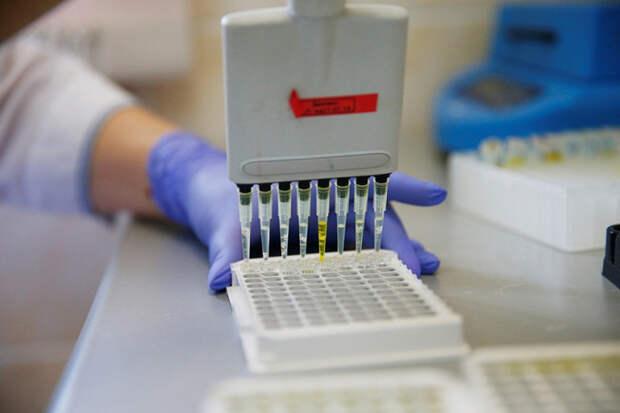 Коронавирус на Кубани обнаружен еще у 91 человека