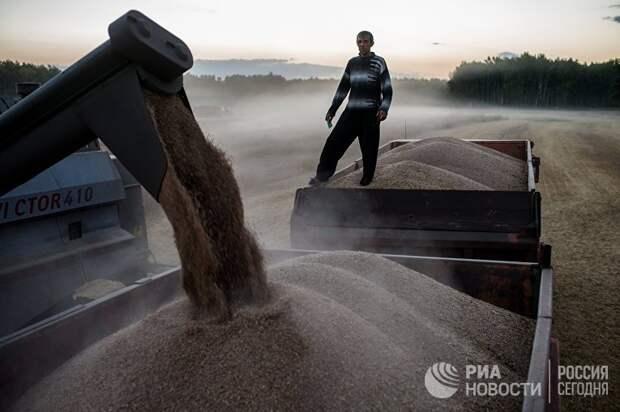 L'Express (Франция): как Россия стала одним из лидеров мирового агропрома