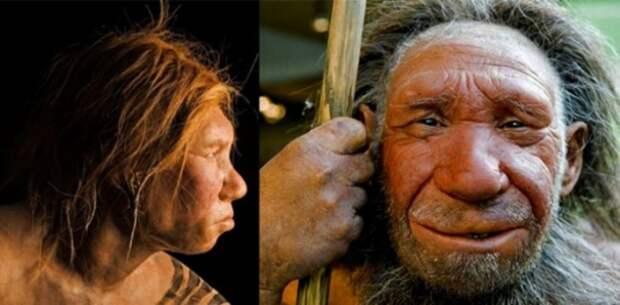 Реконструкция внешности неандертальского мужчины.   Фото: scientificrussia.ru.