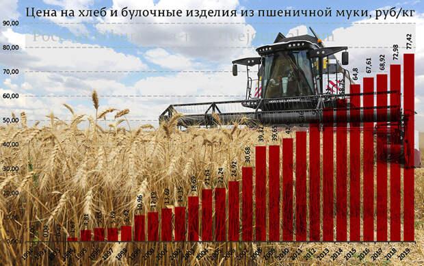 Рассказываю, почему глупо гордиться рекордным урожаем зерновых