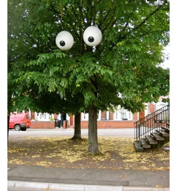 Дерево к Хэллоуину