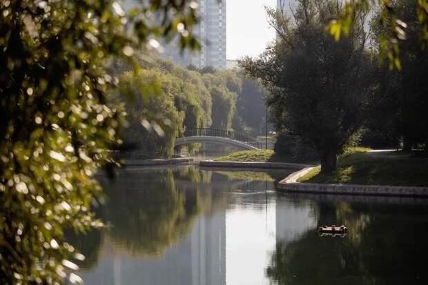 Парк Дружбы. Фото: пресс-служба программы «Мой район»