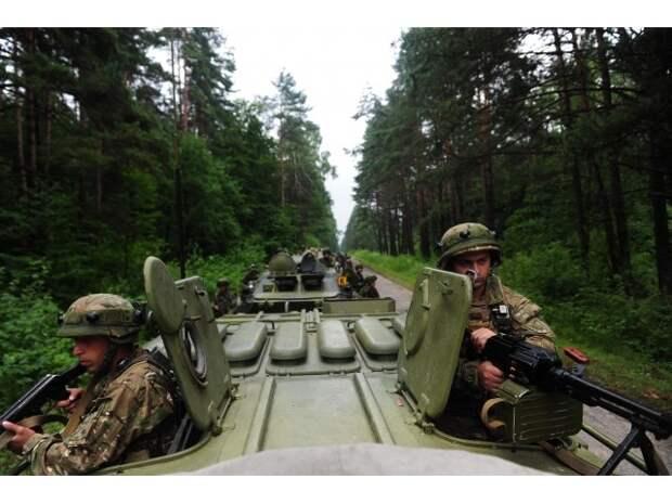 Грузия удивлена: Путин «отпускает» в НАТО Украину, а не Грузию!