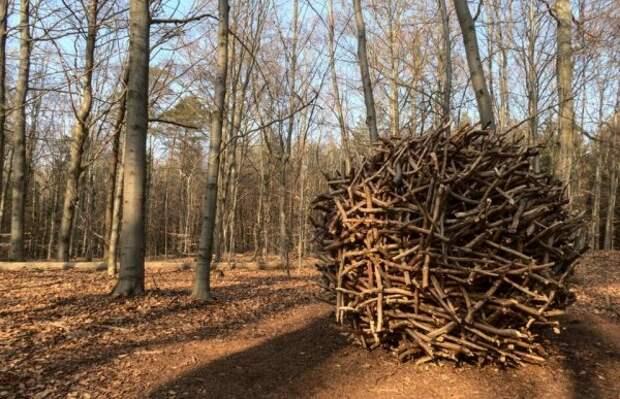 Большой деревянный шар посреди леса