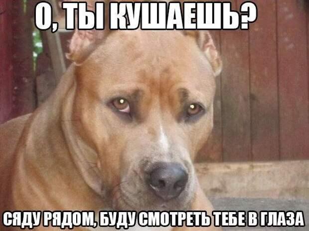 _v1XD4e4cYw
