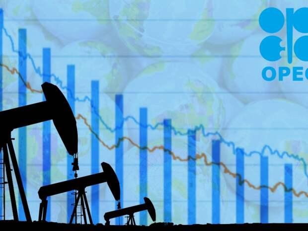 Страны ОПЕК пытались отнять у России долю на рынке нефти в угоду США