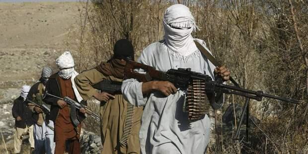 Делегация талибов проведет переговоры в Турции