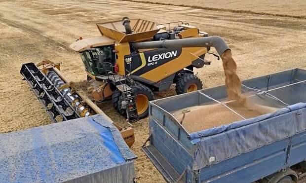 России не следует радоваться росту мировых цен на пшеницу