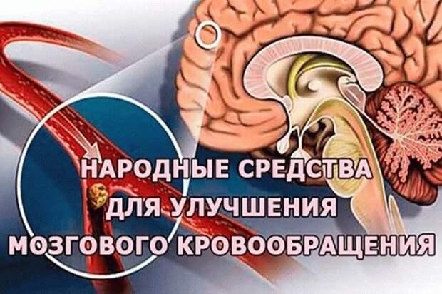 Целебная смесь для укрепления сосудов, восстановления памяти, восстановления мозгового кровообращения