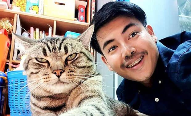 Мужчина установил камеру в спальне и увидел, что каждую ночь кот садится рядом с лицом и смотрит