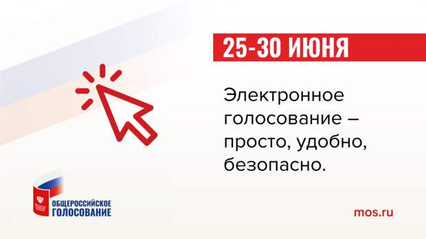 Голосование с 25 по 30 июня будет организовано при помощи блокчейна