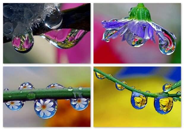 Фотограф и капля воды: гениальность без фотошопа