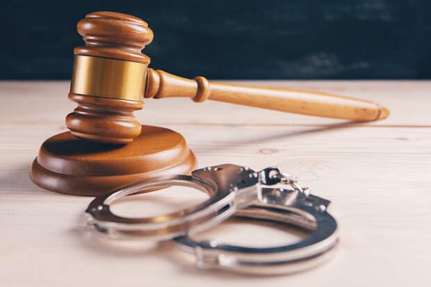 Суд арестовал издевавшуюся над девочкой в Барнауле школьницу