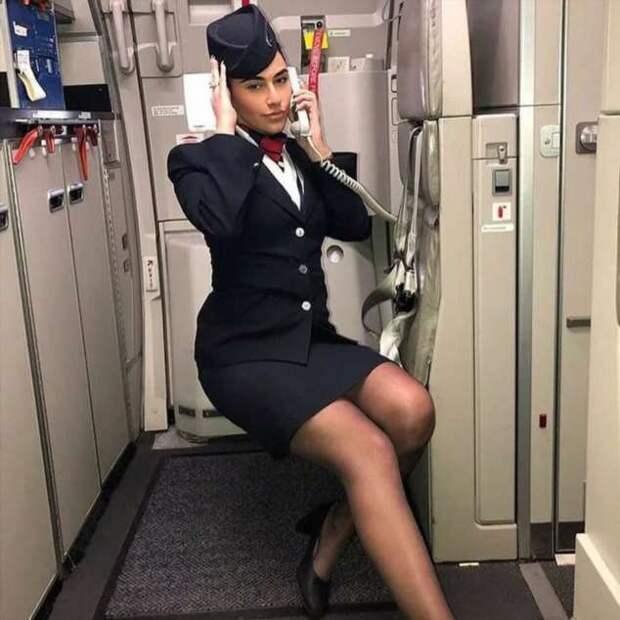 Ножки стюардесс. Подборка chert-poberi-styuardessy-chert-poberi-styuardessy-15320614122020-17 картинка chert-poberi-styuardessy-15320614122020-17