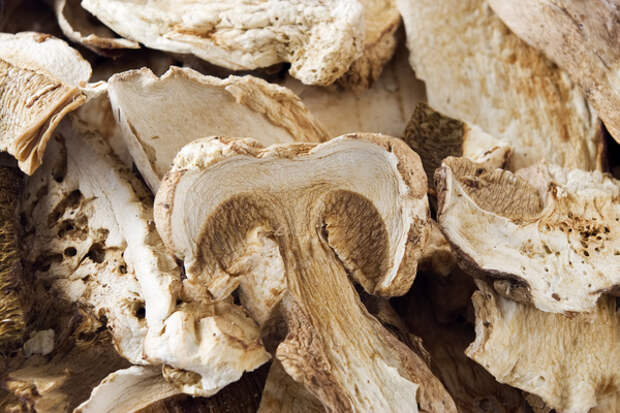 сушеные в микроволновке грибы
