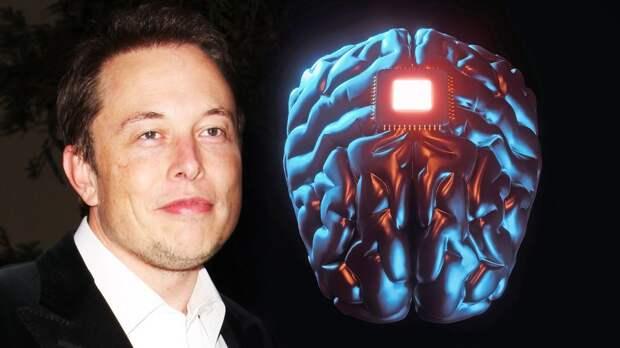 Илон Маск презентовал программу чипирования людей. Чипы для мозга будут размером с монету и со временем подешевеют