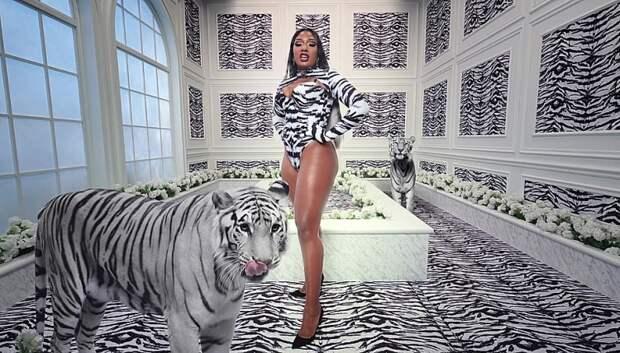 Тигры, леопарды и тверк: Кайли Дженнер снялась в новом клипе Карди Би и Megan Thee Stallion