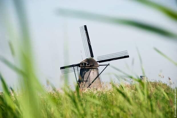 Ветряные мельницы Киндердейка