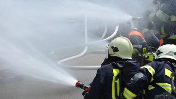 Спасатели обнаружили обгоревшее тело на пепелище в Ленобласти