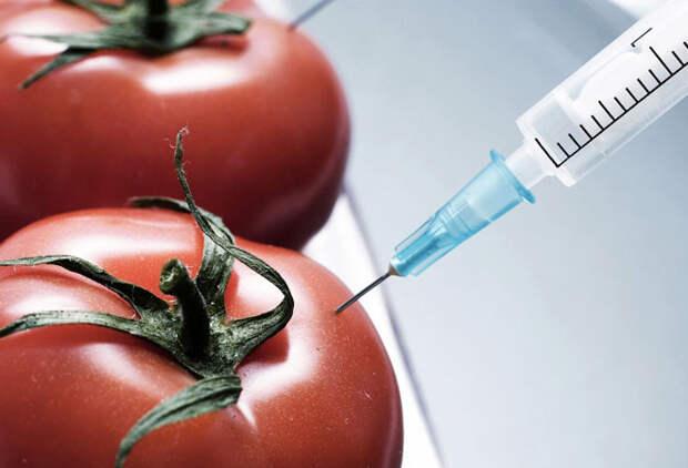 Вредные ингредиенты в составе привычных продуктов