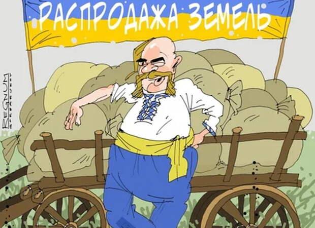 Украинцы: «Это «гениально»! Будем работать на пана, не выезжая с Украины»