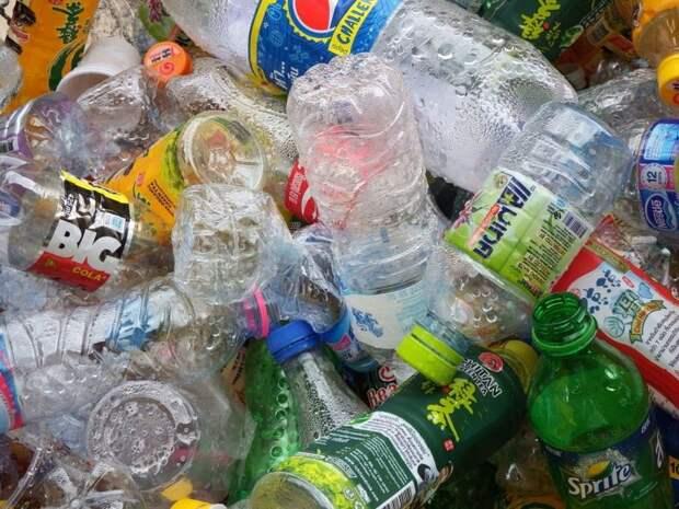Пластиковые бутылки были превращены в ванилин с помощью бактерий