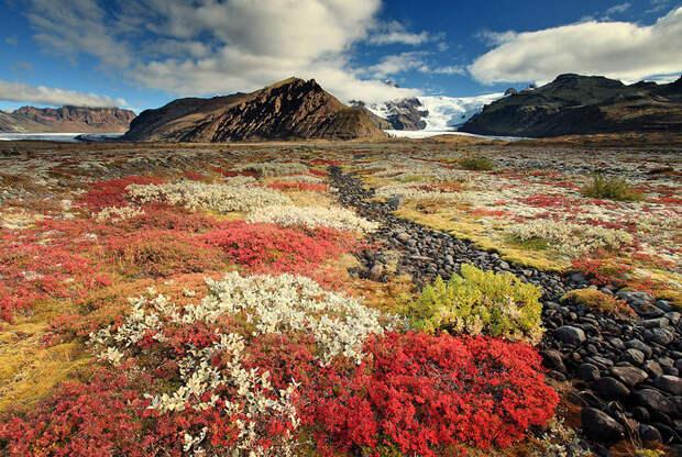 Путешествие в Исландию - 37 фотографий природы-58
