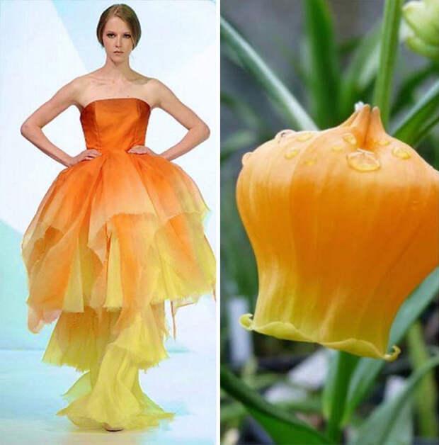 Мода часто черпает вдохновение у природы