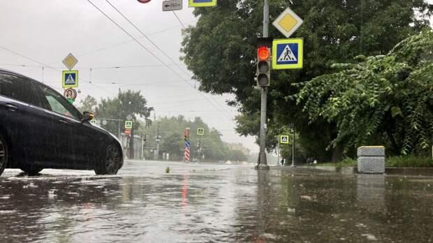МЧС предупредило о дождях и усилении ветра в Петербурге
