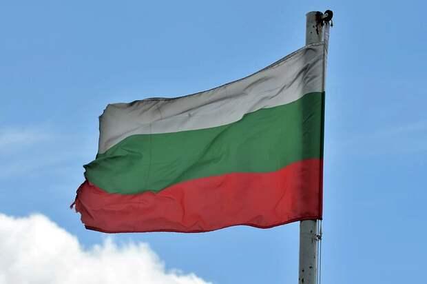 Болгарский журналист заявил о набирающей силу «антироссийской дикости»