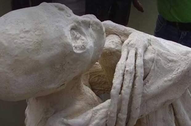 Исследователи откопали мумию перуанского пришельца археологи, в мире, люди, мумия, находка, пришелец, раскопки