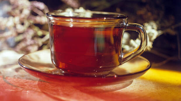 Простая добавка в чай: Медики назвали продукт, спасающий от рака и холестерина