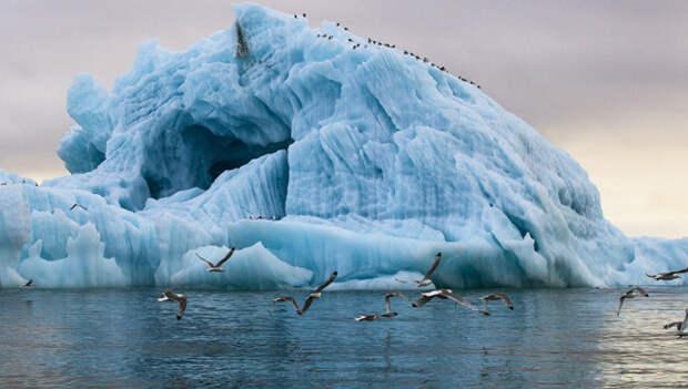 Шойгу заявил об осложнении военно-политической обстановки в Арктике