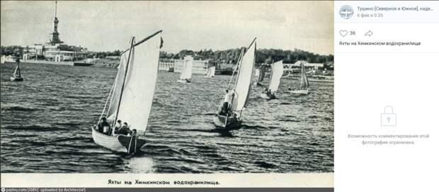Фото дня: гонки на яхтах на Химкинском водохранилище